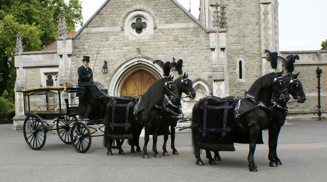 Horse Drawn Hearse pulled by a team of Belgium Blacks